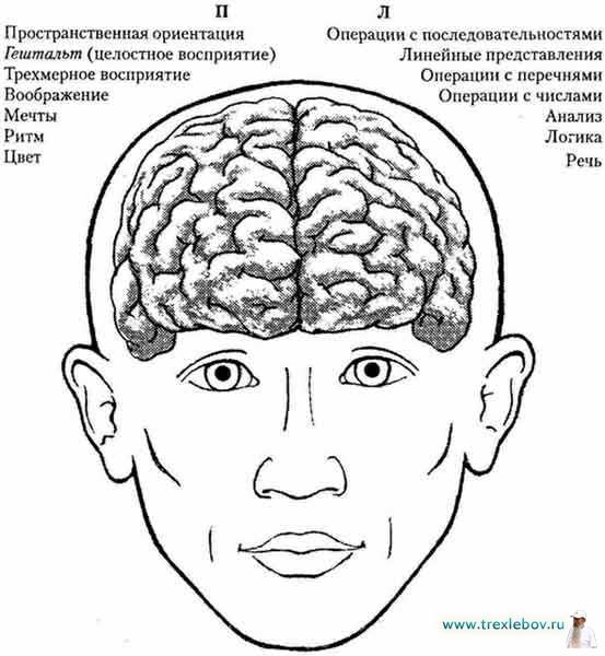 Новое видео от Ведагора. Семинар Защитные мантры