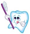 Нужно ли чистить зубы?
