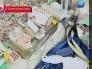Оперативная информация об аресте Алексея Трехлебова (обновлено 28.02.2013) - Трехлебов на свободе!!! УРА!